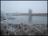 /images/stories/20071223_szadz/800_img_6025_stawek.jpg