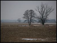 /images/stories/200902_ZimaNaPodlasiu/Narew/640_img_3824_do_przerobki.jpg