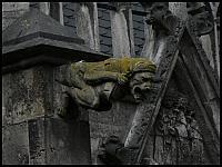 images/stories/20060429_Holandia/800_P1020439_Rzygacz.JPG