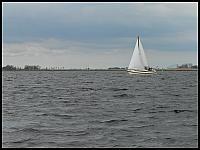 images/stories/20060430_Holandia/800_P1020678_LodkaWiatrak.JPG