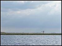 images/stories/20060430_Holandia/800_P1020697_Wiatraczek.JPG