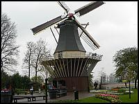 images/stories/20060501_Holandia/800_P1020986_Wiatrak.JPG