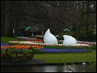 images/stories/20060501_Holandia/800_P1030088_Keukenhof.JPG