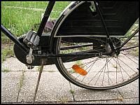 images/stories/20070621_RowerHolenderski/640_fota31_OslonaLancuchaDrugaStrona.jpg