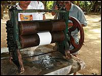 images/stories/20080503_Tajlandia_Sobota/640_Fot162_IMG_3287_ProdukcjaKauczuku_1.JPG