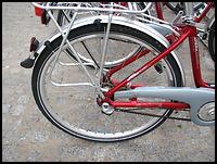 images/stories/20100306_SWR_wywiad/02_640_img_8354_SWR_rower1.jpg