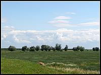 images/stories/20110626_ZulawyPolnocne/800_IMG_2648_ZulawskiKlimat.JPG