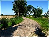 images/stories/20110802_ZbiegiemNogatu/800_IMG_2964_ZulawskaDroga_v1.JPG