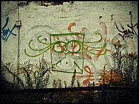 images/stories/20110814_Wrzeszcz/800_Foto-0006_Sowka.jpg