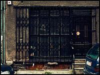 images/stories/20110814_Wrzeszcz/800_Foto-0008_Krata.jpg