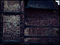 images/stories/20110814_Wrzeszcz/800_Foto-0054_Oczy.jpg