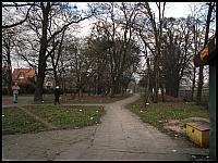 images/stories/20110815_OliwaMojeMiejsce/800_img_2863_DrogaWzdluzTorow.jpg