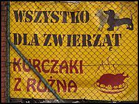 images/stories/20110815_OliwaMojeMiejsce/800_img_2890_WszystkoDlaZwierzat.jpg