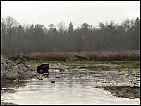 images/stories/20110815_OliwaMojeMiejsce/800_img_2934_Opacka.jpg