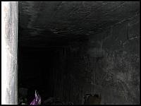 images/stories/20110815_OliwaMojeMiejsce/800_img_2945_Nietoperzowo2.jpg