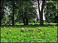 images/stories/20110904_ZulawyPoludniowe/800_IMG_3343_CmentarzMennonicki_v1.JPG