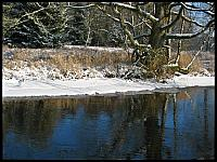 images/stories/20120205_Czernica/640_IMG_4368_Brzeg_v1.JPG