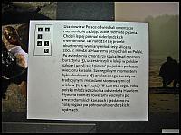 images/stories/20120318_ZulawyMuzeum/800_IMG_4643_MlodziezZhaarlemu_zm.JPG