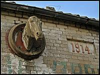 images/stories/20120318_ZulawyMuzeum/800_IMG_4786_KonskiLeb_zm.JPG