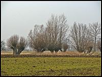 images/stories/20120318_ZulawyMuzeum/800_IMG_4841_Wierzbowo_zm.JPG