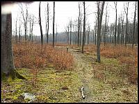 images/stories/20120416_CzarnyWejherowski/800_20120415_105951_Anka.jpg