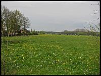 images/stories/20120429_HolandiaOkoliceZutphen/640_IMG_5375_Wies_v1.JPG