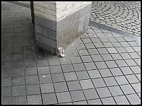 images/stories/20120430_HolandiaMaastricht/640_IMG_5443_UlicaMaastricht_v1.JPG