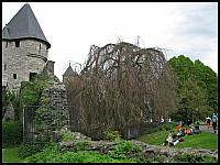 images/stories/20120430_HolandiaMaastricht/640_IMG_5547_Park_v1.JPG