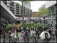 images/stories/20120430_HolandiaMaastricht/640_IMG_5566_Rowerowo_v1.JPG