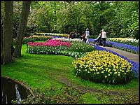 images/stories/20120502_HolandiaKeukenhoff/640_IMG_5995_Park_v1.JPG