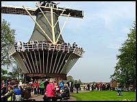 images/stories/20120502_HolandiaKeukenhoff/640_IMG_6052_Wiatrakowo_v1.JPG