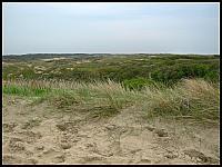 images/stories/20120502_HolandiaKeukenhoff/640_IMG_6139_Wydmy_v1.JPG