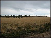 images/stories/20120504_HolandiaVeluwezoom/640_IMG_6409_NajdzikszeMiejsceHolandii_v1.JPG