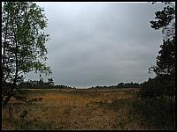 images/stories/20120504_HolandiaVeluwezoom/640_IMG_6412_ParkVeluwezoom_v1.JPG