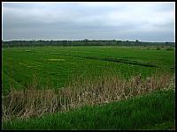 images/stories/20120504_HolandiaVeluwezoom/640_IMG_6455_PolaVeluwezoom_v1.JPG
