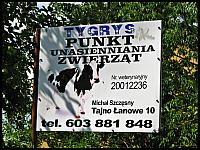 images/stories/20120710_Biebrza/640_IMG_6946_PunktUnasienianiaTygrys_v1.JPG