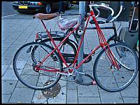 images/stories/20121010_Holandia/640_IMG_8157_Rower_v1.JPG