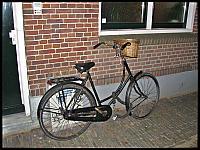 images/stories/20121010_Holandia/640_IMG_8168_Rower_v1.JPG