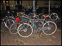 images/stories/20121010_Holandia/640_IMG_8172_Rower_v1.JPG