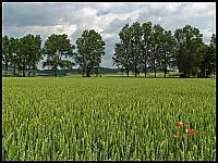 images/stories/20130701_Urlop_Bardo/640_IMG_0017_Krajobraz_v1.JPG