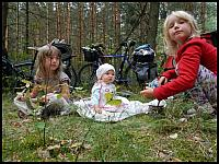 images/stories/20130815_SierpniowePoLesie/640_DSCN4040.jpg