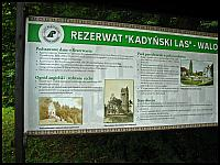 images/stories/20130825_RiwieraZalewuWislanego/640_IMG_1239_RezerwatKadynskiLas_v1.JPG