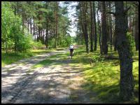 images/stories/2014/20140706_OkoliceZwierzynca/750_IMG_4020_Roztocze_v1.JPG