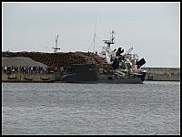 images/stories/2014/20140817_ZaglowceWgdyni/640_IMG_4769_Kondor.JPG