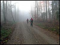 images/stories/2014/20141109_LewinoKurhany/640_IMG_5148_DoOwczarni_v1.JPG