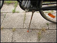 images/stories/20070621_RowerHolenderski/640_fota36_Stopka3.jpg