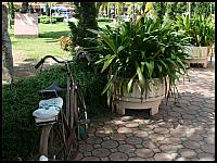 images/stories/20080503_Tajlandia_Sobota/640_Fot126_img_2790_rower_1.jpg