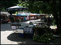 images/stories/20080503_Tajlandia_Sobota/640_Fot137_img_2842_Kokosy_1.jpg