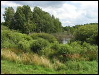 images/stories/200908_UrlopLetni/krajobraz/640_img_1346_Bagno.jpg