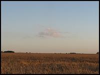 images/stories/200908_UrlopLetni/krajobraz/640_img_1710_niebo.jpg